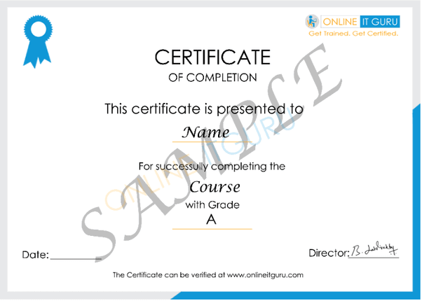 Online IT Guru Certificate