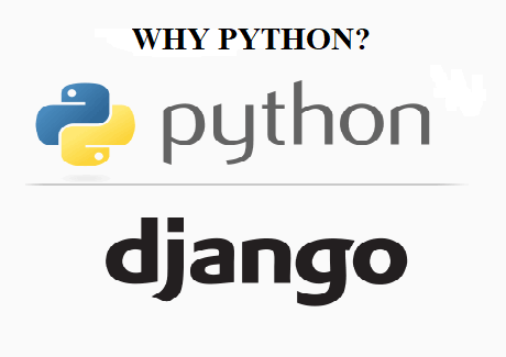 Why do people prefer Python